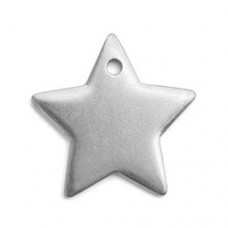 "Pewter Star, 1"" Blank"