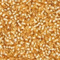 Miyuki Delica Beads 11